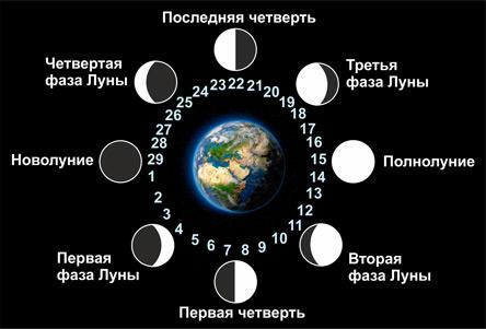 Лунные дни, фазы Луны. Школа Свет Звезд.